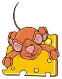 Ratón que duerme y que abraza la una pieza del queso Fotos de archivo