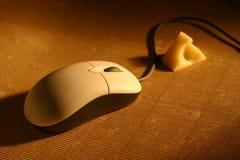 Ratón y queso calientes Imagen de archivo