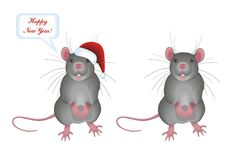 Rat. Vector illusrtatoin of new year rat Stock Images