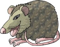 Rat. This illustration that I created depicts a large rat Royalty Free Stock Photography