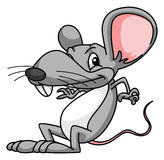 Rat Cartoon Funny Royalty Free Stock Image
