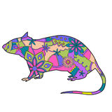 Rat colorful Royalty Free Stock Image