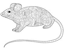 Rat Coloring book vector for adults. Rat animal coloring book for adults vector illustration. Anti-stress coloring for adult rodent. Zentangle style. Black and Royalty Free Stock Photo