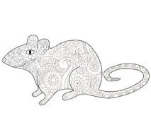 Rat Coloring book vector for adults. Rat animal coloring book for adults vector illustration. Anti-stress coloring for adult rodent. Zentangle style. Black and Royalty Free Stock Images