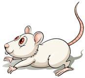 Rat in een springende positie royalty-vrije illustratie