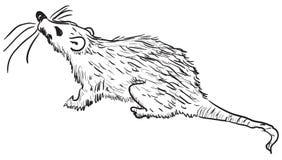 Rat. Figure rodent pests - rats. Vector illustration. Cartoon Stock Photography