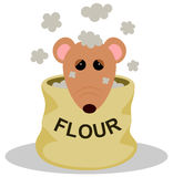 Rat in flour Royalty Free Stock Photography