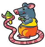 Rat gym Stock Images