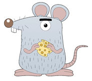Rat holding cheese Stock Photo