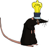 Rat with a light bulb Stock Photo