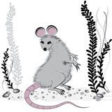 Rat, mouse as symbol for year 2020 by Chinese traditional horoscope with grass.  Stock Image