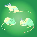 Rat, mouse - sketch, the drawing in color (green) Stock Images