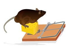 Rat and mouse trap Royalty Free Stock Photo