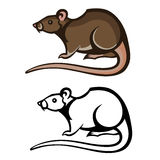 Rat pest vector drawing home parasite Royalty Free Stock Images