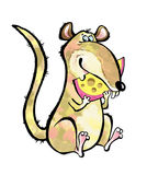 Rat rodent cartoon teeth fun Stock Photography