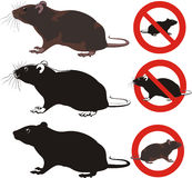 Rat, rodent - warning signs vector illustration