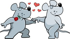 Rat Romance Stock Photo