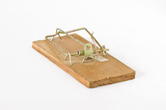 Rat trap Royalty Free Stock Image
