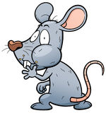 Rat. Vector illustration of cartoon Rat Stock Images