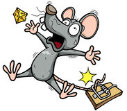 Rat. Vector illustration of A rat is trying to steal a piece of cheese Stock Images