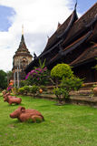 Rat in Wat Lokmolee In chiangmai Thailand Stock Photo