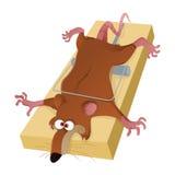 Rata en trampa ilustración del vector