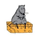 Rata gorda linda de la historieta en un pedazo de queso Fotografía de archivo libre de regalías
