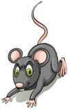 Rata negra ilustración del vector