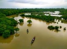 Ratargul, Bangladesh Imagens de Stock Royalty Free