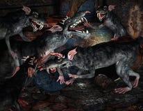 Ratas de los monstruos de la lucha Foto de archivo libre de regalías