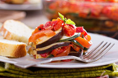 Ratatouille on a plate Royalty Free Stock Image
