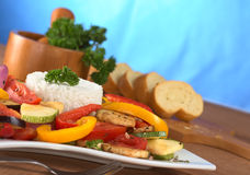 Ratatouille with Rice Stock Photography