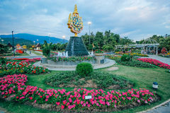 Ratchaphruek-garden 18 December 2015: Royalty Free Stock Image