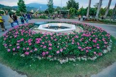 Ratchaphruek-Garten am 18. Dezember 2015: Lizenzfreies Stockbild