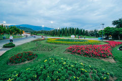 Ratchaphruek-Garten am 18. Dezember 2015: Lizenzfreie Stockbilder