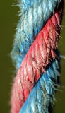 Ratchet lashing strap. Pink colored ratchet lashing strap Stock Image