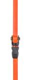Ratchet strap on a white background. Orange ratchet strap on a white background royalty free stock image