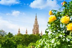 Rathaus among roses Royalty Free Stock Photography