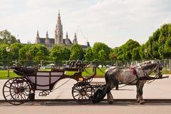Rathaus Viena, Áustria Imagens de Stock Royalty Free