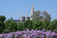 Rathaus in Vienna, Austria Stock Images