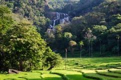 Rathna Ella, på 111 fot, är den 10th högsta vattenfallet i Sri Lanka som placeras i det Kandy området Arkivfoton