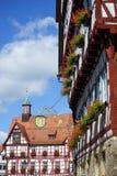 Rathouse и стена с цветками Стоковое Изображение RF
