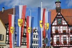 Rathouse и флаги Стоковые Изображения RF