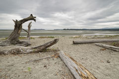 Rathtrevor-Strand an einem bewölkten Tag Lizenzfreie Stockfotos