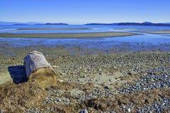 Rathtrevor Wyrzucać na brzeg prowincjonału parka podczas niskiego przypływu w Vancouver Jest fotografia royalty free