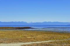 Rathtrevor Wyrzucać na brzeg prowincjonału parka podczas niskiego przypływu w Vancouver Jest obrazy royalty free