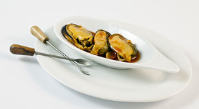 Ration of mussels. On a white background Stock Photos