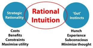 Rationell intuition royaltyfri illustrationer