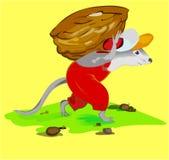 rato Imagem de Stock