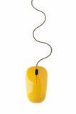 Rato amarelo do computador Imagem de Stock Royalty Free